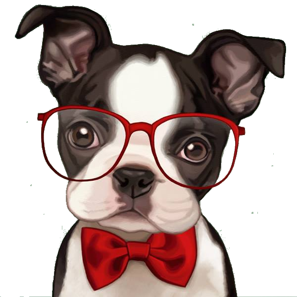 pic of dog in glasses